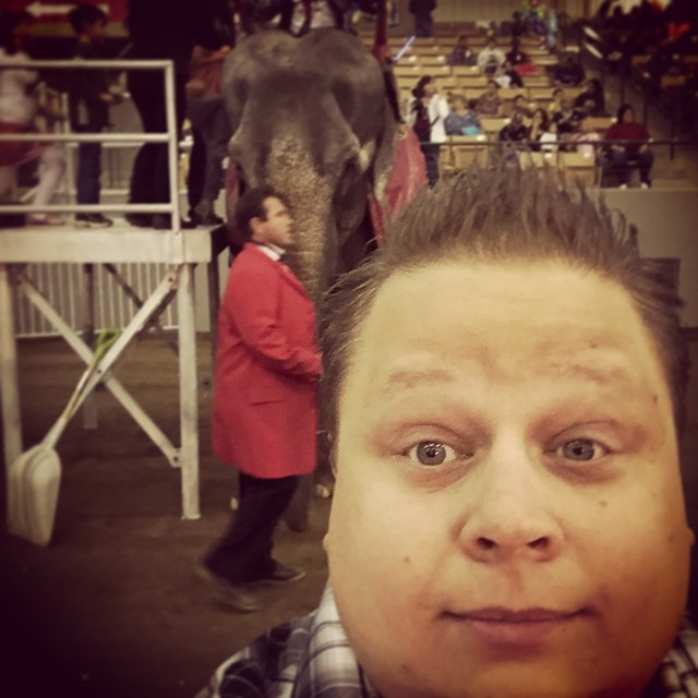 Selfie with an Elephant don't mind if I do.